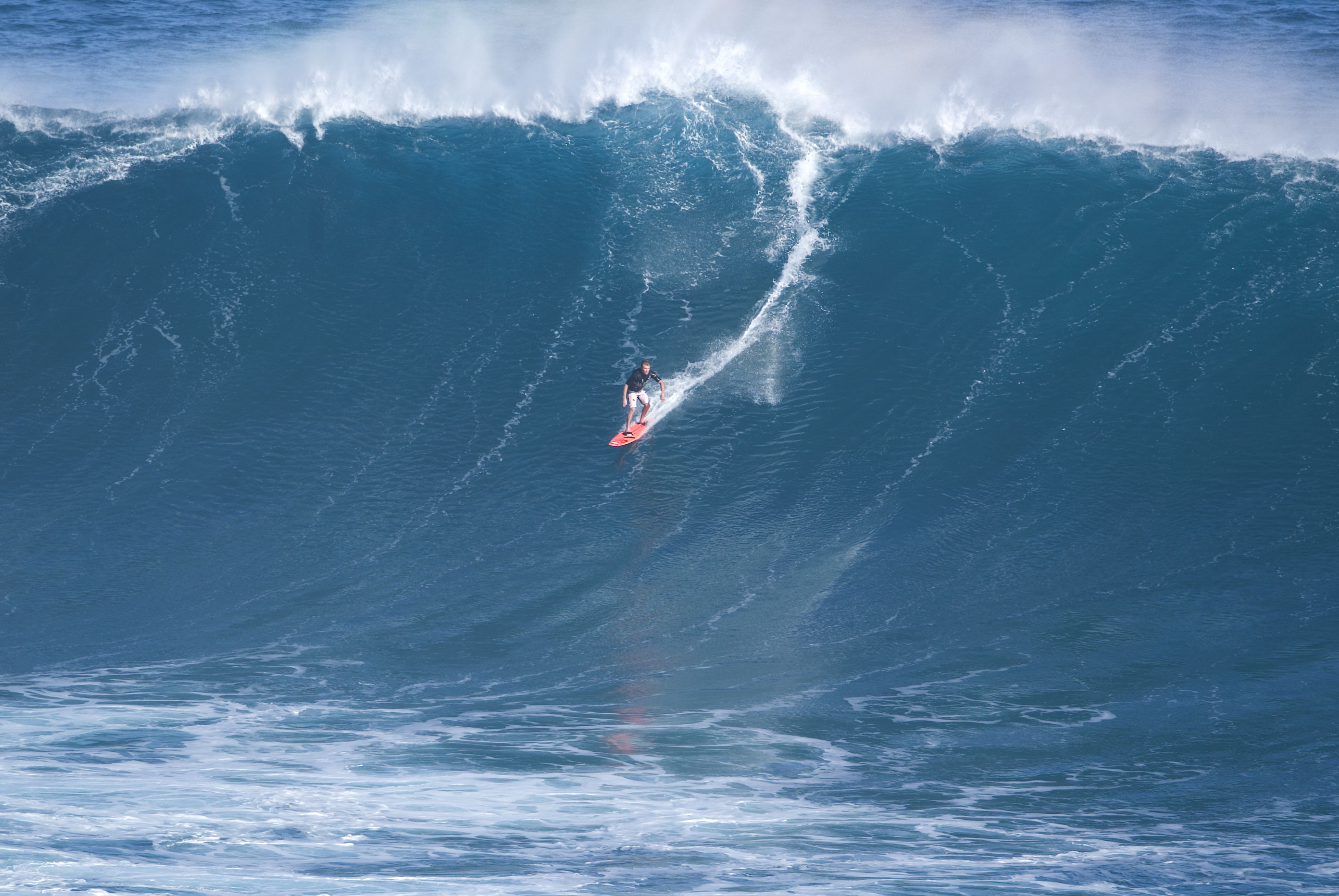 The 31st Annual Quiksilver In Memory Of Eddie Aikau