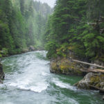 Seymour River in British Columbia